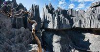 Rừng đá kì bí, ít người hay biết tại Madagascar