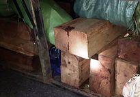 Bị phát hiện chở gỗ lậu, chủ xe khách đút lót 10 triệu đồng