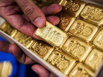 Dự báo giá vàng trong tuần