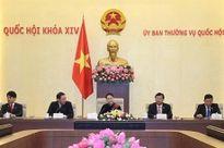 Giữ gìn và phát huy quan hệ hữu nghị tốt đẹp Việt Nam - Nhật Bản là trọng trách của thế hệ trẻ