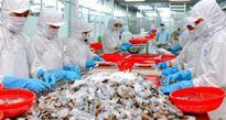 Kim ngạch xuất nhập khẩu đã đạt hơn 250 tỷ USD