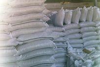 Xuất bán cám mì trái quy định, thu lợi gần 10 tỷ đồng