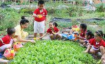 7 hoạt động ngoại khóa bổ ích cho trẻ nhỏ
