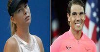 Fan chê Nadal to mồm, mỹ nhân Sharapova 'đanh đá' bênh vực