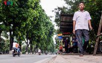 Hà Nội thông tin chính thức về dịch chuyển 130 cây xanh