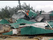 Hàng trăm nhà hàng ở Nghệ An bị bão vàu nát