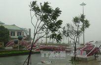 Khắc phục hậu quả bão số 10 gây ra cho đường bộ miền Trung