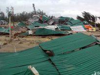 Nghệ An ước tính thiệt hại ban đầu 518 tỷ đồng do bão số 10