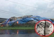 Hà Nam: Nhà máy xử lý rác thải gây ô nhiễm kinh hoàng, hàng nghìn người dân khốn khổ sống trong hôi thối