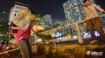 Người Hà Nội đổ xô bắt cá dưới sông Tô Lịch sau cơn mưa lớn
