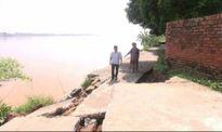 Sạt lở đe dọa tính mạng và tải sản nhiều hộ dân huyện Tam Nông, Phú Thọ