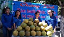 Người dân TP Vinh mua bưởi Phúc Trạch giúp đỡ bà con nông dân vùng tâm bão số 10