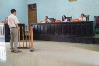 Gia Lai: Miễn hình phạt cho kiểm lâm bắn chết người buôn lậu gỗ