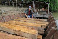 Kiểm lâm bắn chết người buôn lậu gỗ được miễn hình phạt