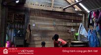 Hà Tĩnh đề nghị hỗ trợ 3.000 tấn gạo cứu đói sau bão số 10