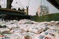 Bộ Lương thực Bangladesh mời thầu nhập khẩu 50.000 tấn gạo