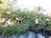 Đà Nẵng: Cựu chiến binh chung tay bảo vệ môi trường