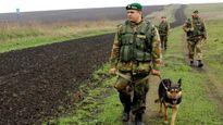 Nhân viên châu Âu bị Ukraine thả chó đuổi ở miền Đông
