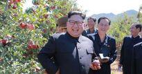 Mặc Trump dọa hủy diệt, Kim Jong-un vẫn cười tươi thăm vườn táo trĩu quả