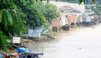Có nên tiếp tục triển khai dự án lấn sông Đồng Nai?