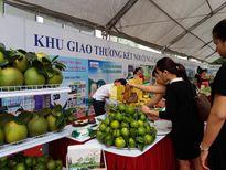 25 tỉnh, thành phố kết nối giao thương hàng hóa với Hà Nội