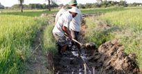 Xây dựng nông thôn mới trên 'đất thép'