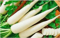 Công dụng đầy đủ của củ cải trắng