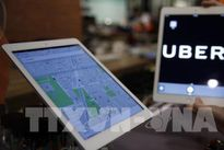 Hàng trăm nghìn người Anh kiến nghị hủy quyết định cấm Uber hoạt động tại London
