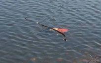 Bàng hoàng phát hiện thi thể người đàn ông nổi trên mặt nước