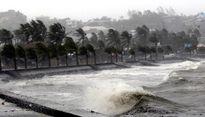 Chủ động ứng phó áp thấp nhiệt đới, mưa lũ
