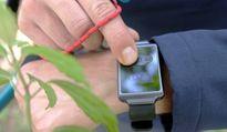 Đồng hồ điều hòa nhiệt độ cơ thể