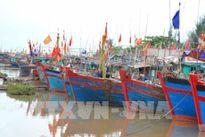 Hải Phòng cấm nhiều hoạt động trên sông, biển từ ngày 25/9