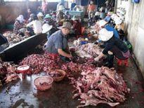 Đà Nẵng: Thưởng nóng cho người báo tin về thực phẩm bẩn
