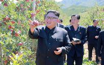 Cận cảnh nhà lãnh đạo Triều Tiên Kim Jong-un thăm trang trại trái cây