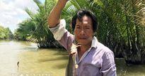 Tuyệt chiêu giăng bắt loài cá có nọc độc mạnh trên sông ở Cà Mau