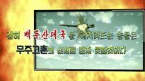 Chuyên gia: Triều Tiên không đủ khả năng tấn công máy bay Mỹ