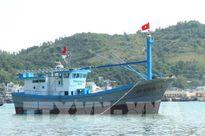 Ngư dân miền Trung hiện đại hóa tàu đánh bắt xa bờ bằng tàu composite