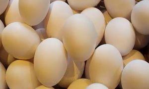 8 sai lầm khi chế biến trứng gà cần loại bỏ ngay
