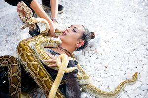 Bất ngờ với biểu cảm của giám khảo Hoàng Yến trong hậu trường tập 5 Next Top Model