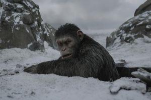 Nhạc phim 'Đại chiến hành tinh khỉ' bị tố đạo từ game Super Mario