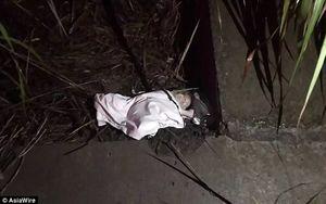 Rúng động bé gái bị người mẹ mới 12 tuổi bỏ rơi trong bụi rậm