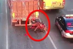 Clip: Kinh hoàng cảnh nam thanh niên húc vào đuôi xe container tử vong