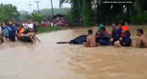 Hơn 50 người cùng chiếc ô tô bị chìm trong nước lũ