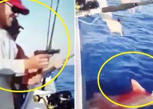 Phẫn nộ cảnh trói rồi dùng súng bắn cá mập máu lênh láng trên biển