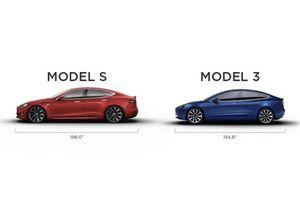 Đặt Model 3, người dùng bị Tesla gạ mua Model S