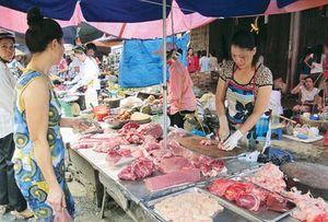 Sử dụng kháng sinh vô tội vạ trong chăn nuôi nên có thực phẩm sạch là điều xa vời