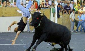 10 khoảnh khắc kinh hoàng động vật tấn công con người