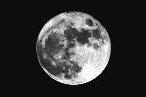 Mặt trăng không phải là vệ tinh tự nhiên duy nhất của Trái đất
