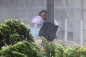 Sóng to gió lớn tấn công Trung Quốc trong bão Hato