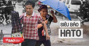 Tổng hợp hình ảnh tan hoang của phía Nam Trung Quốc sau siêu bão cấp 10 Hato